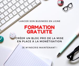 formation gratuite créer un blog pro et le monétiser -business en ligne - maman-freelance